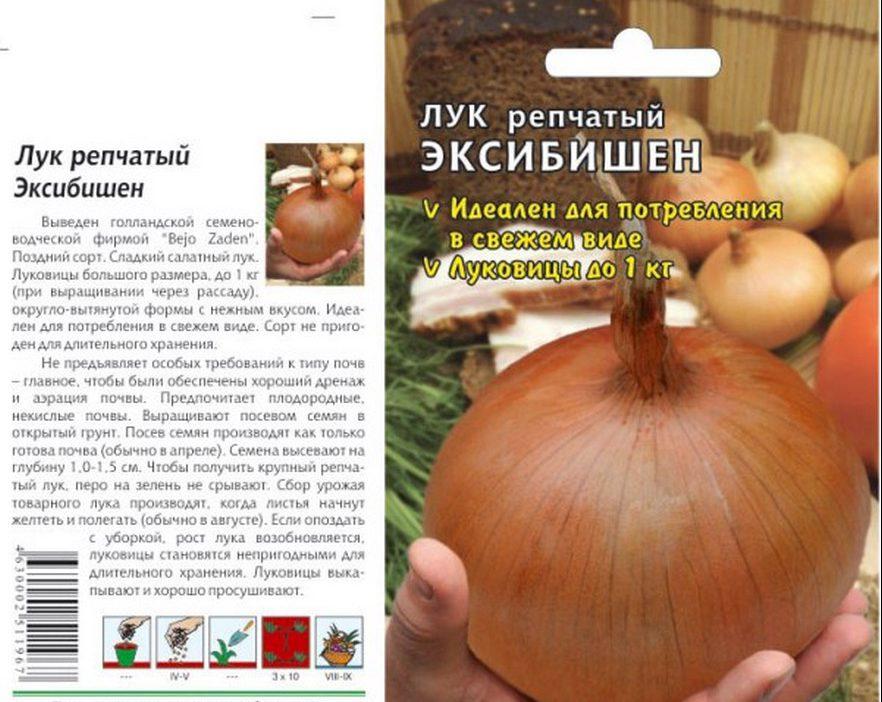 Пакетик с семенами лука Эксибишен